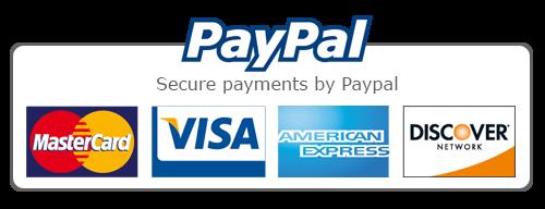 paypal-visa-mastercard-american credit-card